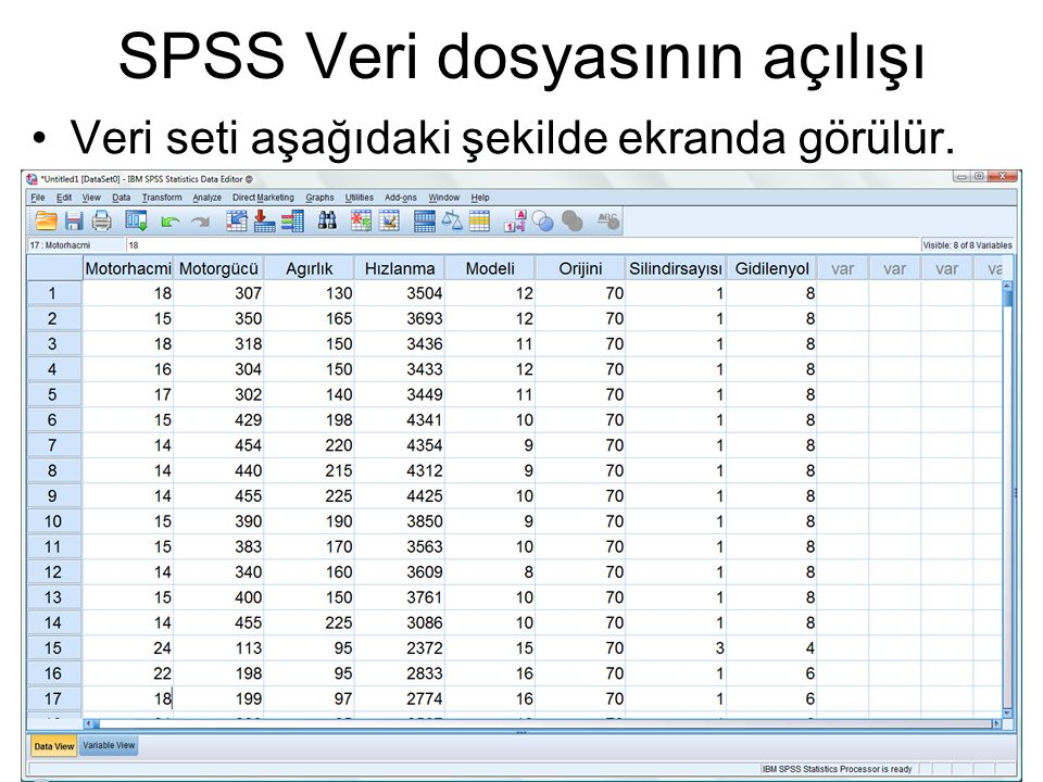 Veri seti aşağıdaki şekilde ekranda görülür.