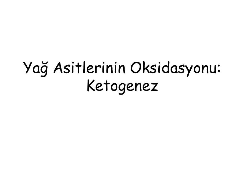 Biyomedikal Önemi Yağ asitleri Asetil CoA'ya yıkılır.