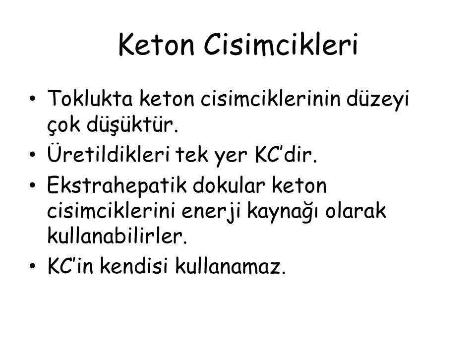 Keton Cisimcikleri Toklukta keton cisimciklerinin düzeyi çok düşüktür. Üretildikleri tek yer KC'dir. Ekstrahepatik dokular keton cisimciklerini enerji