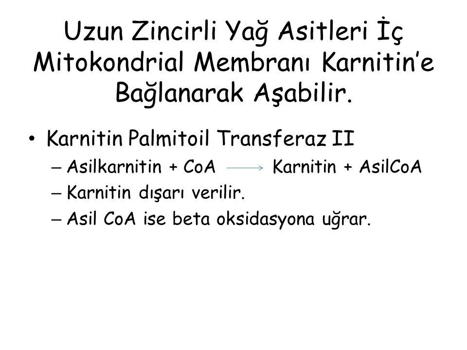 Uzun Zincirli Yağ Asitleri İç Mitokondrial Membranı Karnitin'e Bağlanarak Aşabilir. Karnitin Palmitoil Transferaz II – Asilkarnitin + CoA Karnitin + A