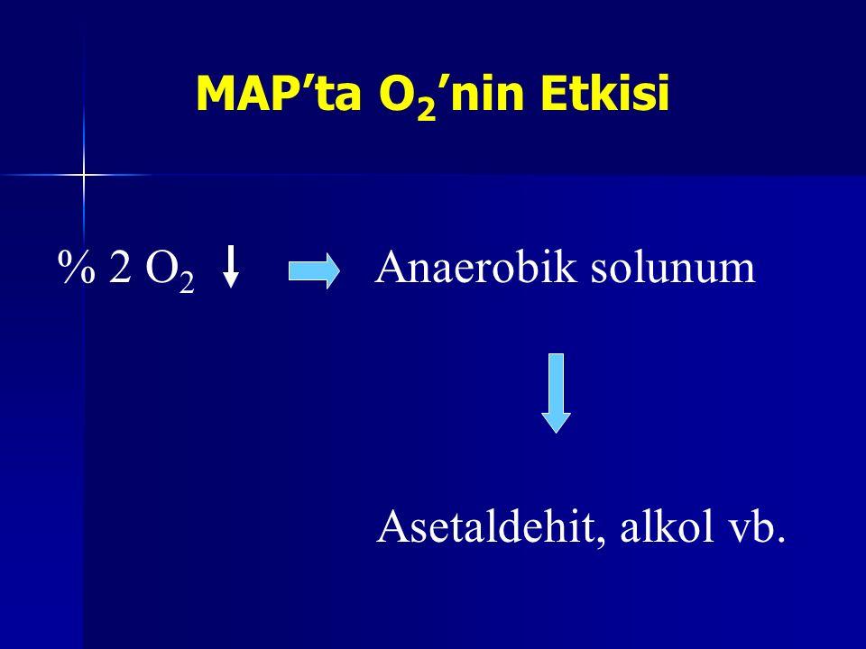 MAP'ta O 2 'nin Etkisi % 2 O 2 Anaerobik solunum Asetaldehit, alkol vb.