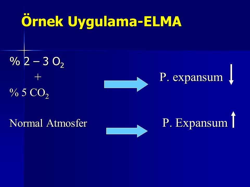Örnek Uygulama-ELMA % 2 – 3 O 2 +P. expansum % 5 CO 2 Normal Atmosfer P. Expansum