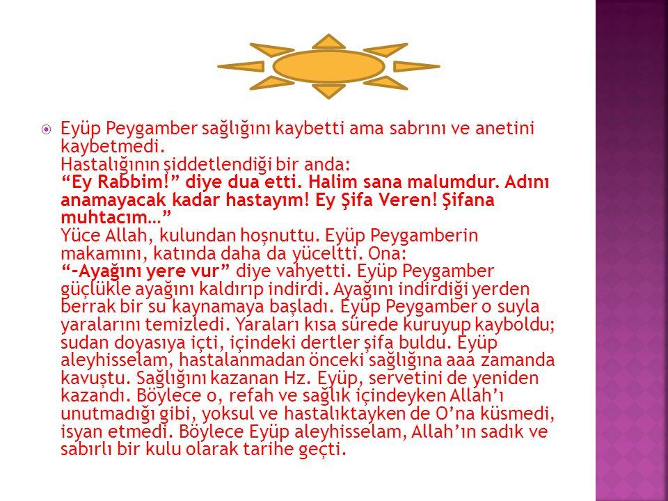 """""""-Allah verdi; Allah aldı; her şey O'nun değil mi?"""" diyordu. Eyüp Peygamber hayvanlarını kaybetti ama sabrını ve aaaanetini kaybetmedi. Belalar geldiğ"""