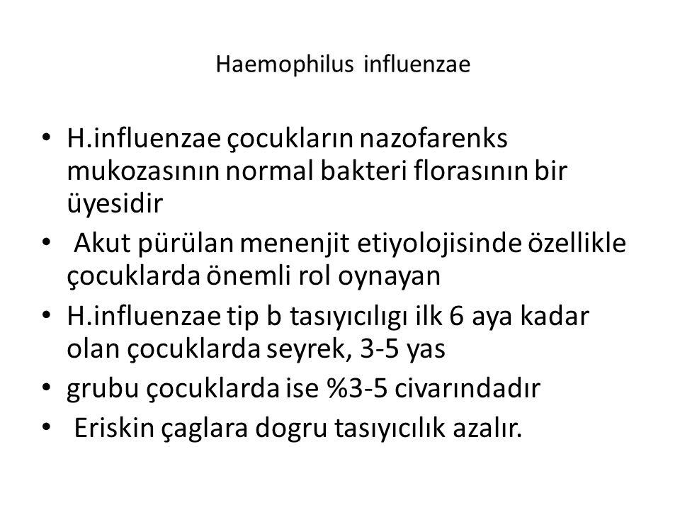 Haemophilus influenzae H.influenzae çocukların nazofarenks mukozasının normal bakteri florasının bir üyesidir Akut pürülan menenjit etiyolojisinde öze