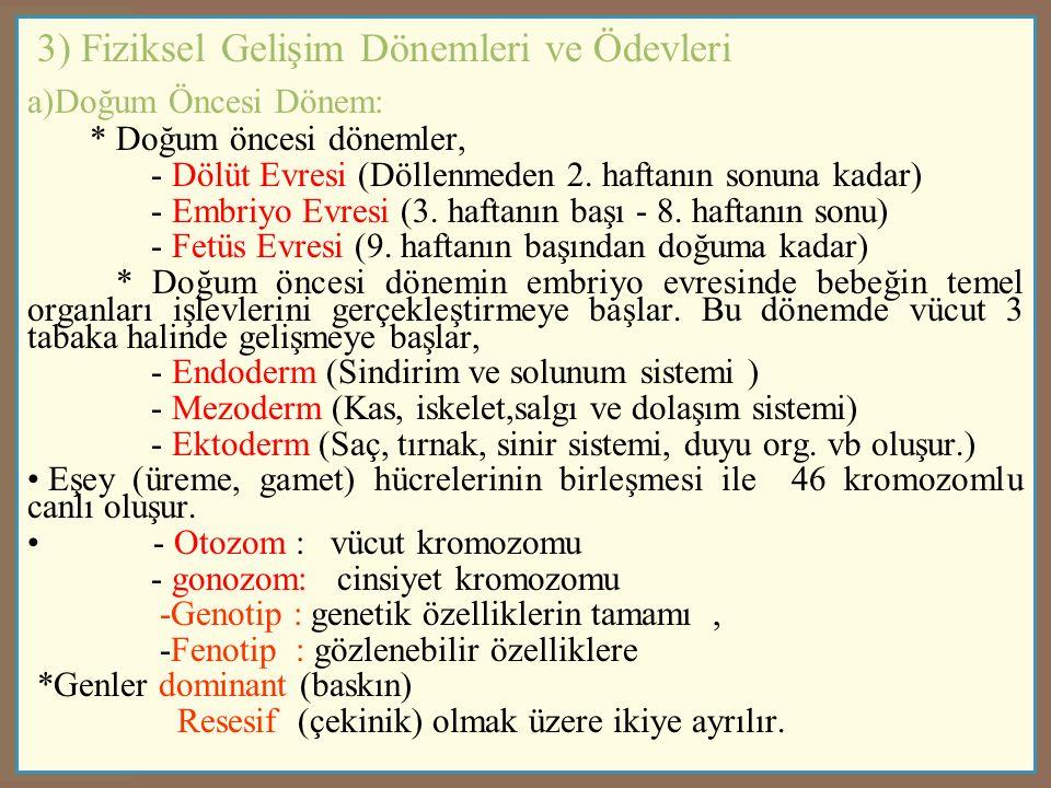 3) Fiziksel Gelişim Dönemleri ve Ödevleri a)Doğum Öncesi Dönem: * Doğum öncesi dönemler, - Dölüt Evresi (Döllenmeden 2.