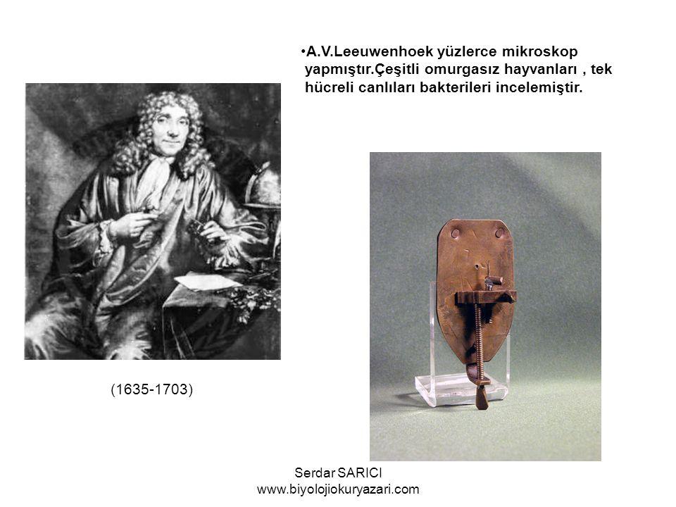 Carl von Linne(1707-1778) 1753 te Systema Naturae adlı eserini yayınladı.Bilimsel olarak ilk sınıflandırmayı yapan bilim adamı olarak tanınır.