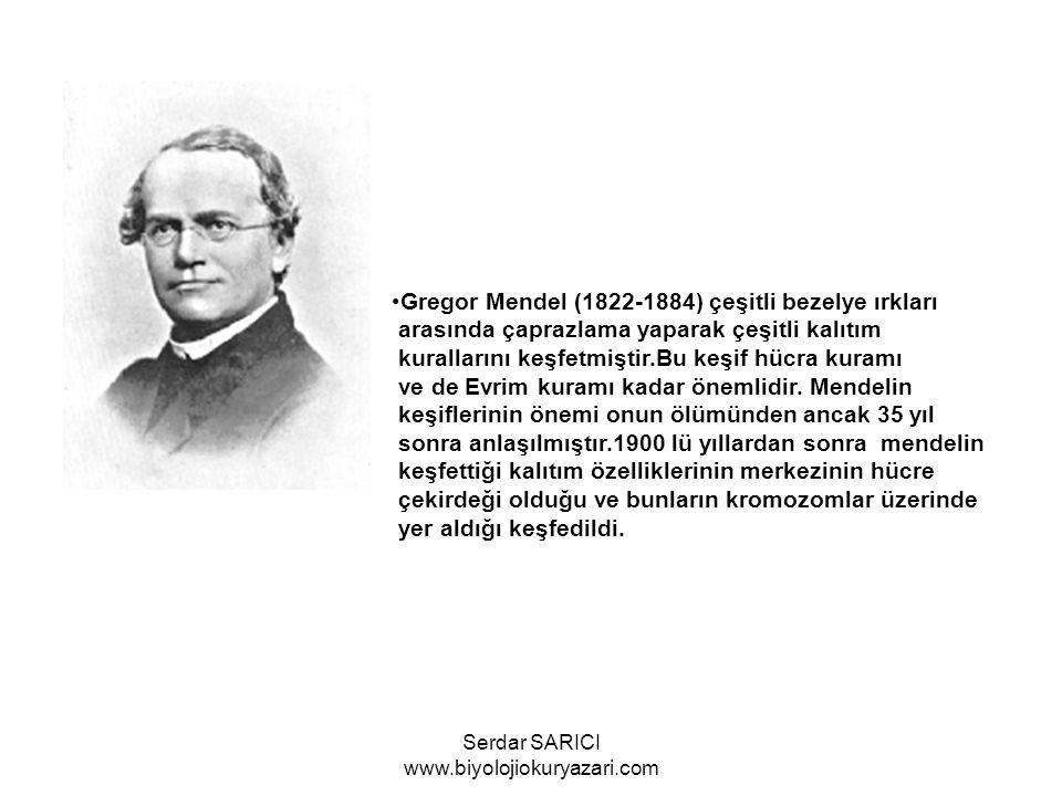 Johan Friedrich Miescher 1869 da akyuvar ve balık sperm hücrelerinde nükleik asitleri bulmuştur.