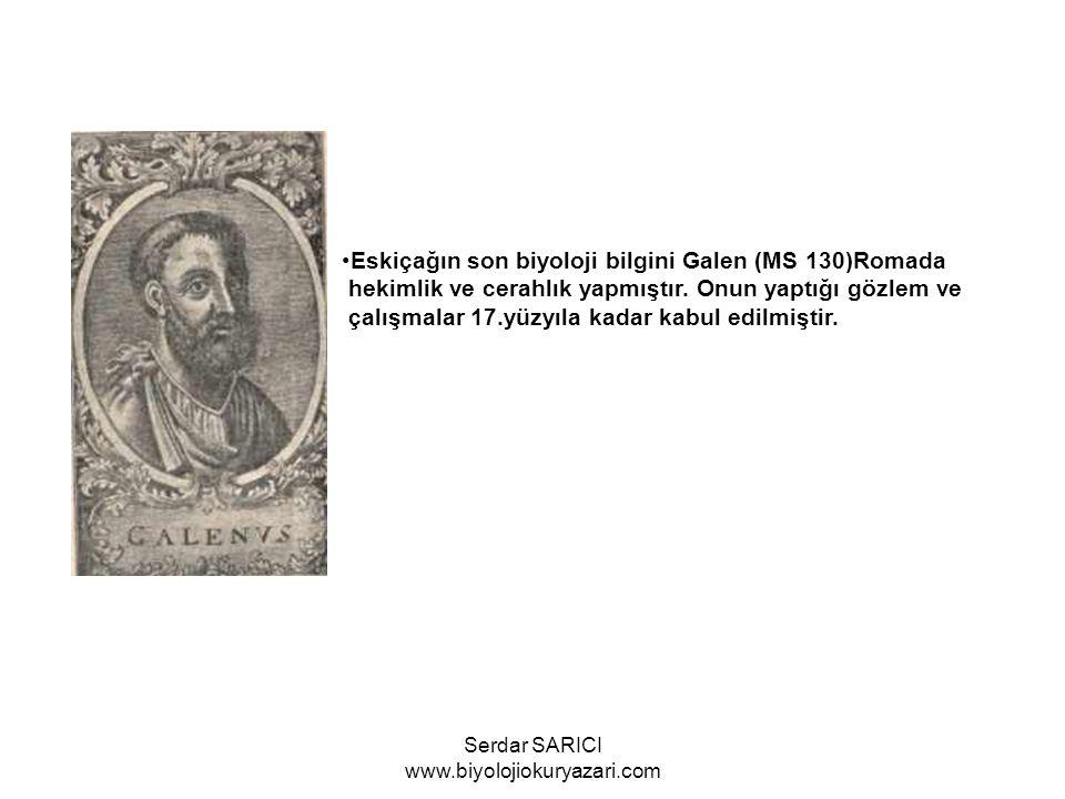 İbni Sînâ Matematik, astronomi, geometri alanlarında geniş araştırmaları vardır.