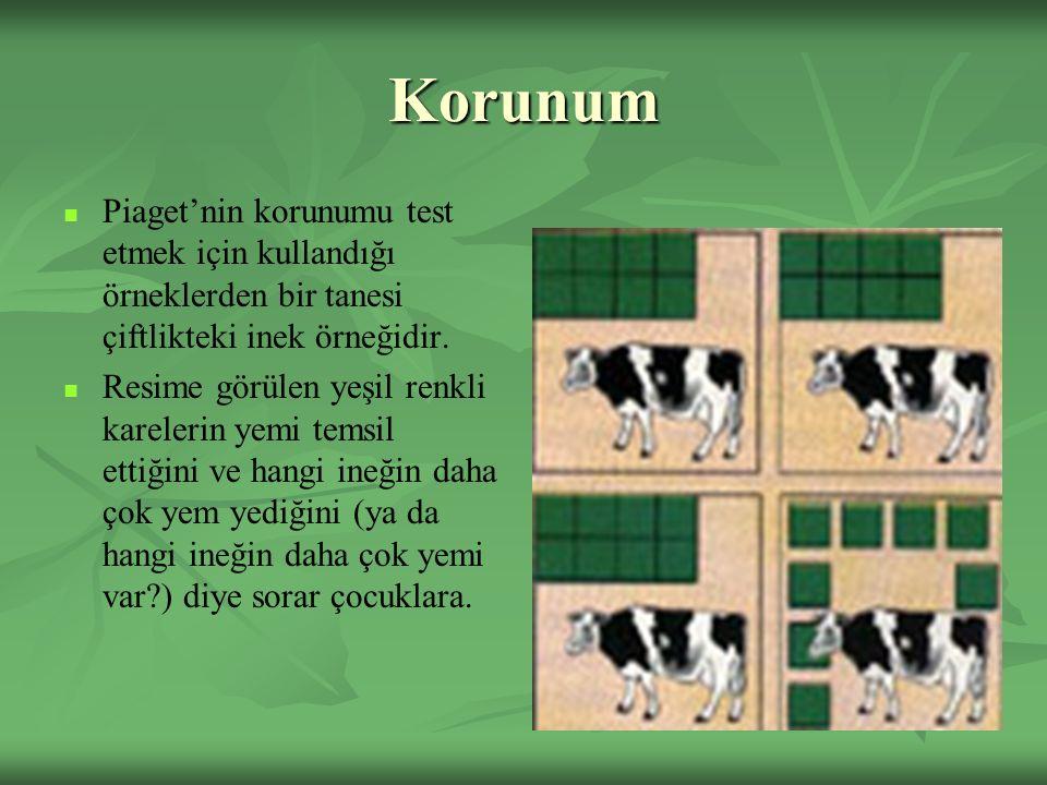 Korunum Piaget'nin korunumu test etmek için kullandığı örneklerden bir tanesi çiftlikteki inek örneğidir. Resime görülen yeşil renkli karelerin yemi t