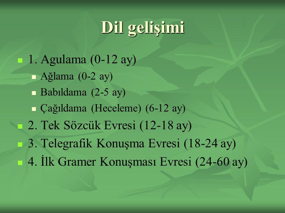 Dil gelişimi 1. Agulama (0-12 ay) Ağlama (0-2 ay) Babıldama (2-5 ay) Çağıldama (Heceleme) (6-12 ay) 2. Tek Sözcük Evresi (12-18 ay) 3. Telegrafik Konu
