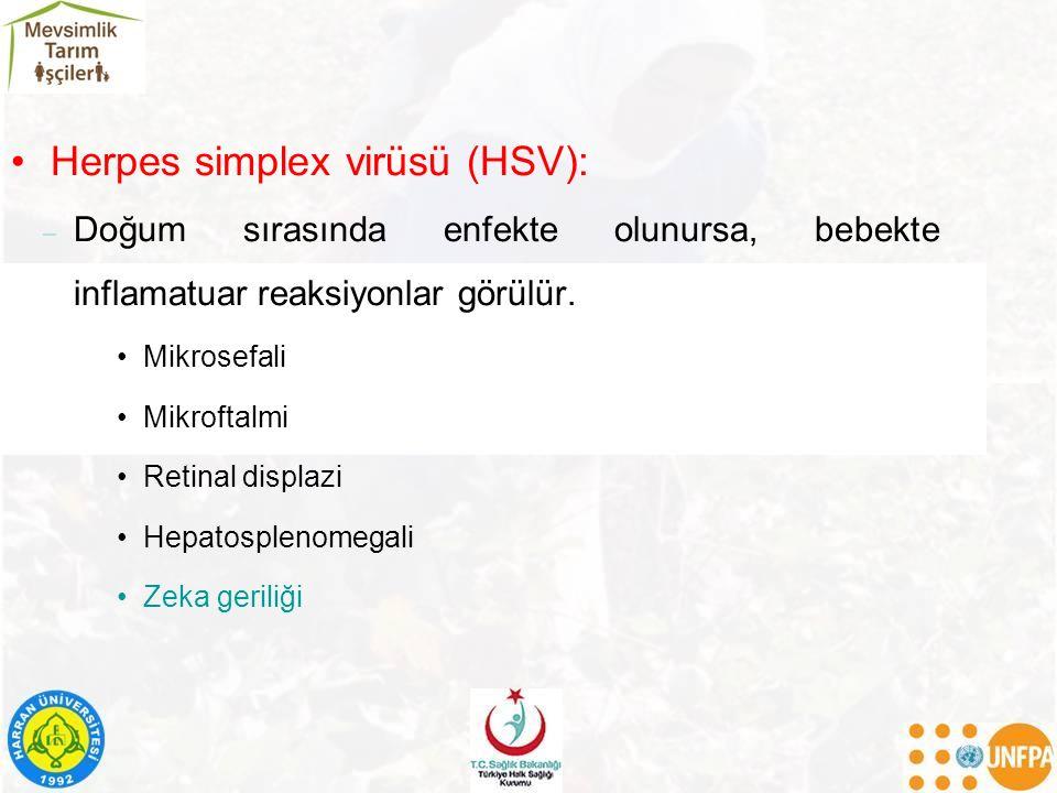 Herpes simplex virüsü (HSV): – Doğum sırasında enfekte olunursa, bebekte inflamatuar reaksiyonlar görülür. Mikrosefali Mikroftalmi Retinal displazi He