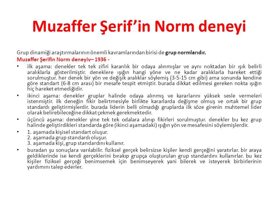 Muzaffer Şerif'in Norm deneyi Grup dinamiği araştırmalarının önemli kavramlarından birisi de grup normlarıdır. Muzaffer Şerifin Norm deneyiv– 1936 - i