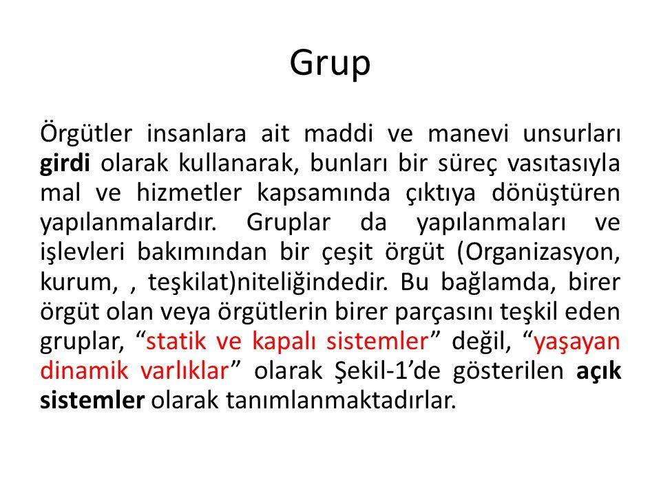 Açık sistem olarak gruplar