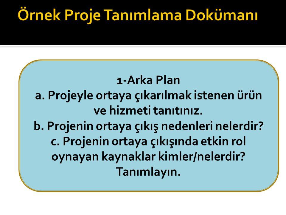 1-Arka Plan a. Projeyle ortaya çıkarılmak istenen ürün ve hizmeti tanıtınız.