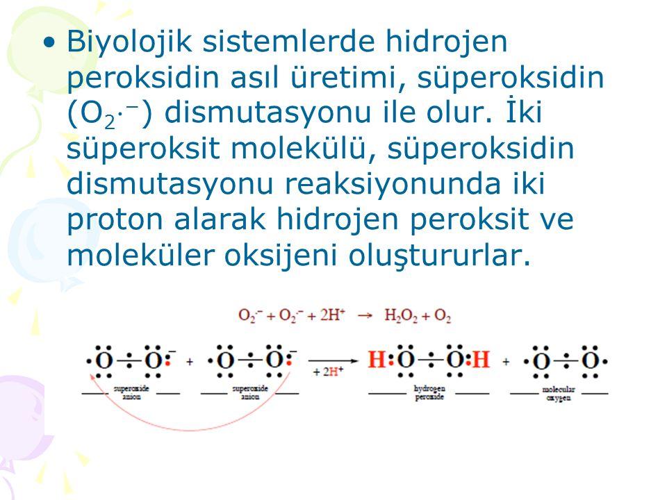 Biyolojik sistemlerde hidrojen peroksidin asıl üretimi, süperoksidin (O 2 ⋅ − ) dismutasyonu ile olur. İki süperoksit molekülü, süperoksidin dismutasy