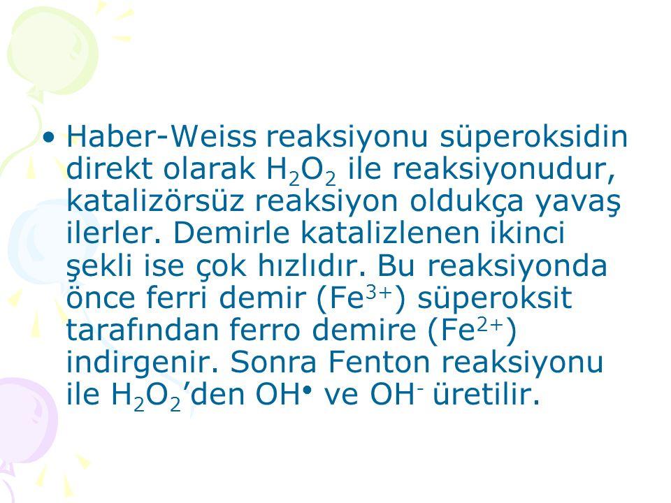 Haber-Weiss reaksiyonu süperoksidin direkt olarak H 2 O 2 ile reaksiyonudur, katalizörsüz reaksiyon oldukça yavaş ilerler. Demirle katalizlenen ikinci