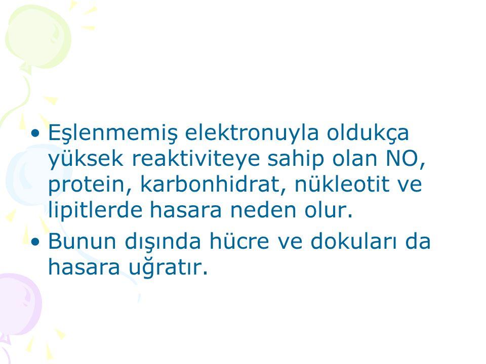 Eşlenmemiş elektronuyla oldukça yüksek reaktiviteye sahip olan NO, protein, karbonhidrat, nükleotit ve lipitlerde hasara neden olur.