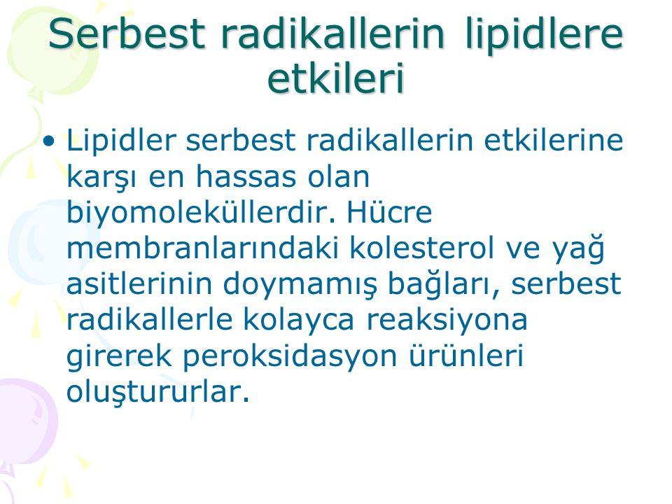 Serbest radikallerin lipidlere etkileri Lipidler serbest radikallerin etkilerine karşı en hassas olan biyomoleküllerdir. Hücre membranlarındaki kolest