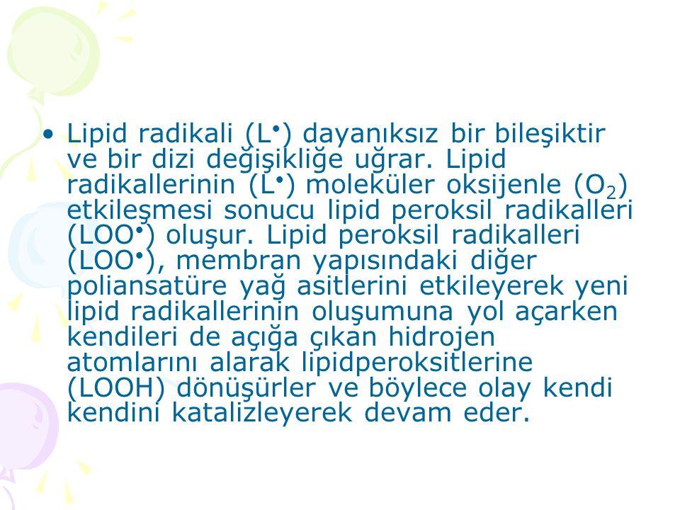 Lipid radikali (L ) dayanıksız bir bileşiktir ve bir dizi değişikliğe uğrar. Lipid radikallerinin (L ) moleküler oksijenle (O 2 ) etkileşmesi sonucu l