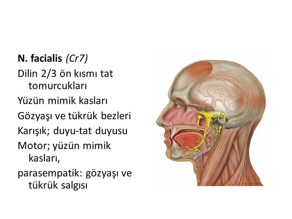 N. facialis (Cr7) Dilin 2/3 ön kısmı tat tomurcukları Yüzün mimik kasları Gözyaşı ve tükrük bezleri Karışık; duyu-tat duyusu Motor; yüzün mimik kaslar