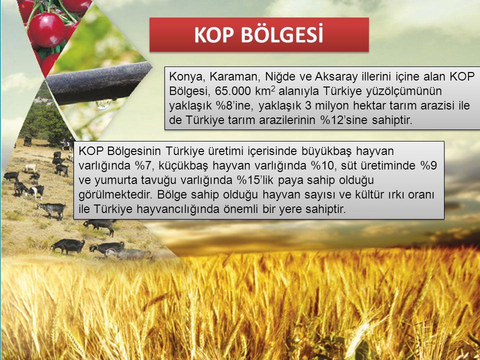 KOP BÖLGESİ Konya, Karaman, Niğde ve Aksaray illerini içine alan KOP Bölgesi, 65.000 km 2 alanıyla Türkiye yüzölçümünün yaklaşık %8'ine, yaklaşık 3 milyon hektar tarım arazisi ile de Türkiye tarım arazilerinin %12'sine sahiptir.