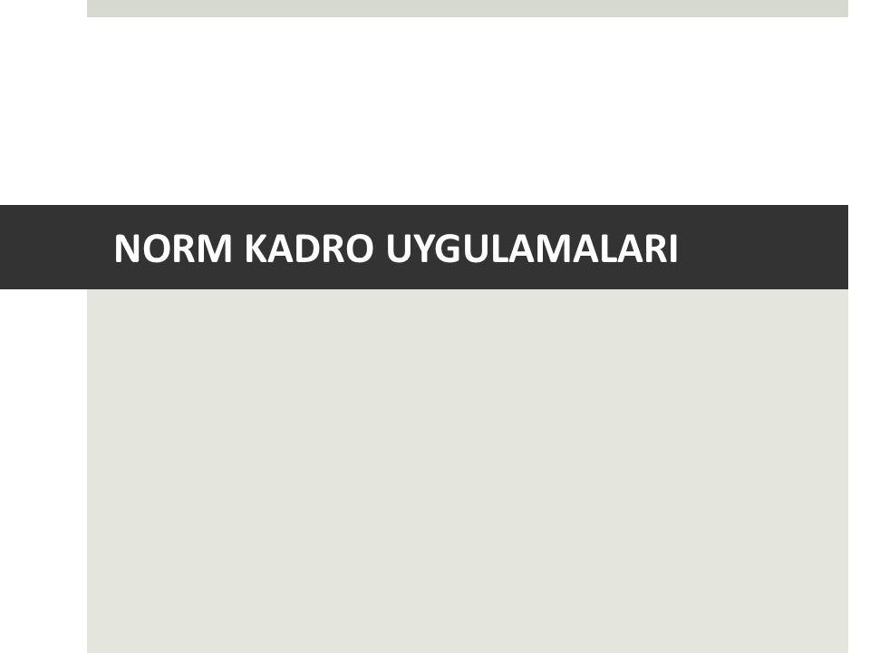 NORM KADRO UYGULAMALARI