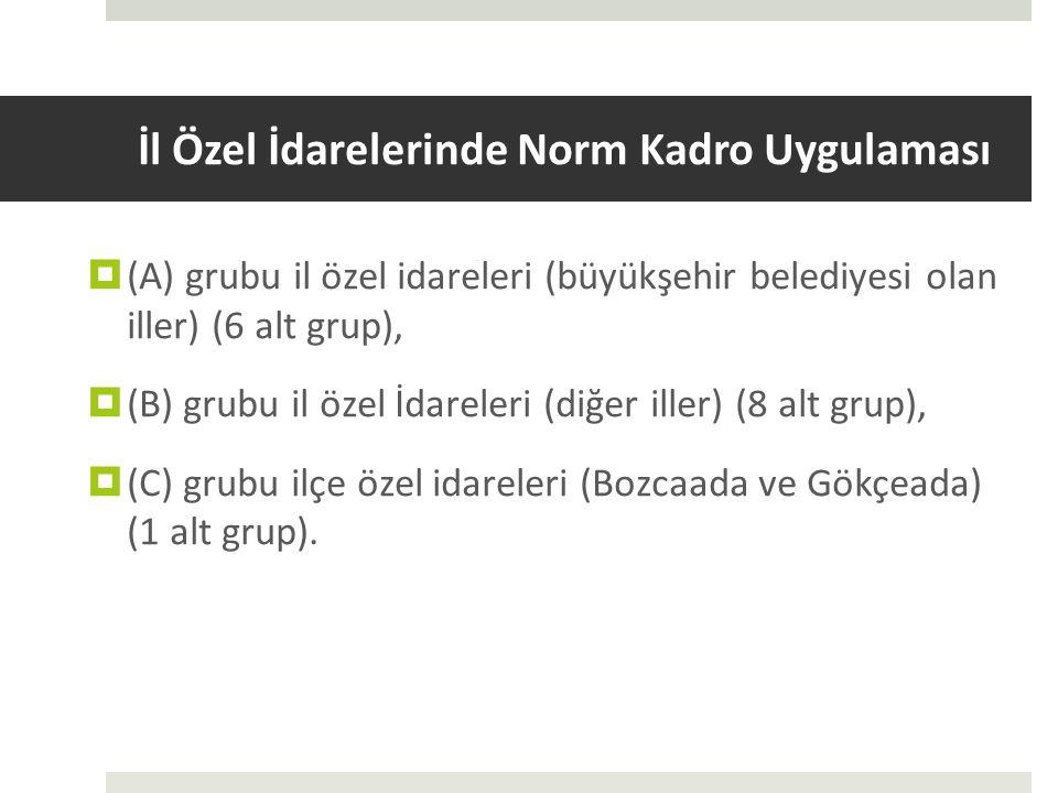 İl Özel İdarelerinde Norm Kadro Uygulaması  (A) grubu il özel idareleri (büyükşehir belediyesi olan iller) (6 alt grup),  (B) grubu il özel İdareler
