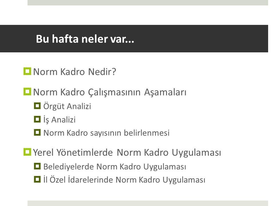 Norm Kadro Nedir.