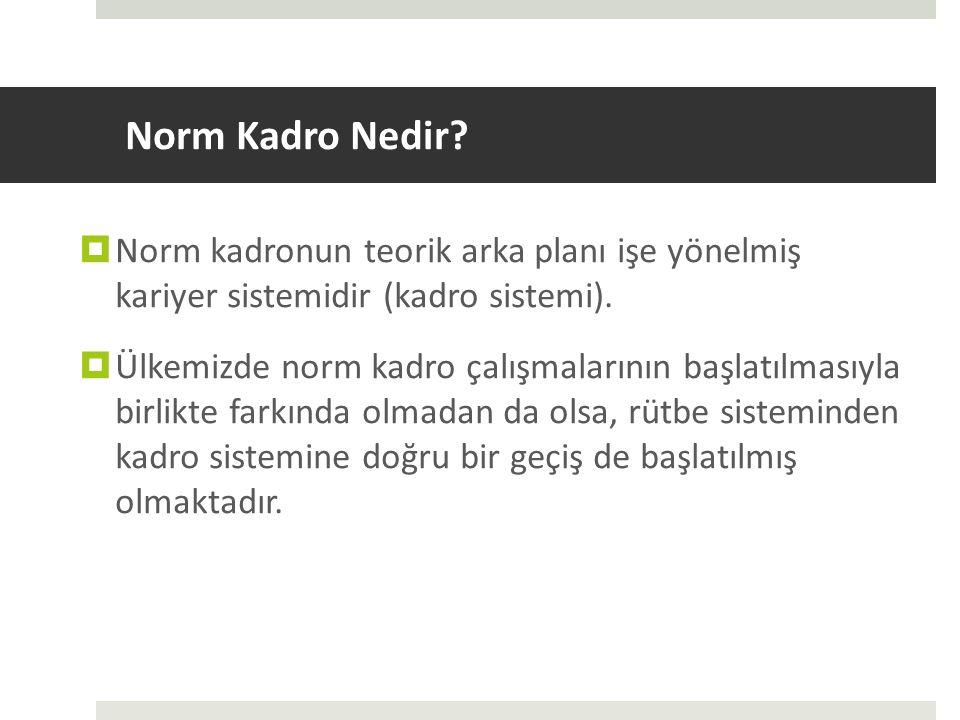 Norm Kadro Nedir?  Norm kadronun teorik arka planı işe yönelmiş kariyer sistemidir (kadro sistemi).  Ülkemizde norm kadro çalışmalarının başlatılmas
