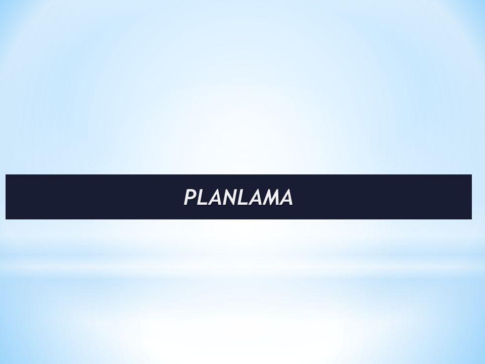 * Planlama ile başlayan süreç, ortaya çıkan plandan uygulamaya, uygulamadan denetime ve denetimden tekrar planlamaya doğru bir akış izler.