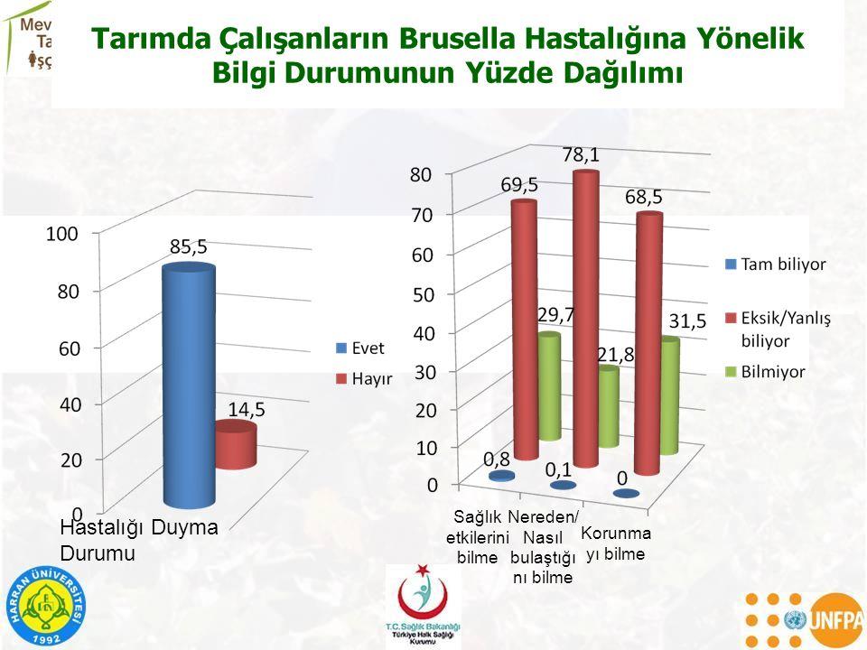 Tarımda Çalışanların Brusella Hastalığına Yönelik Bilgi Durumunun Yüzde Dağılımı Sağlık etkilerini bilme Nereden/ Nasıl bulaştığı nı bilme Korunma yı