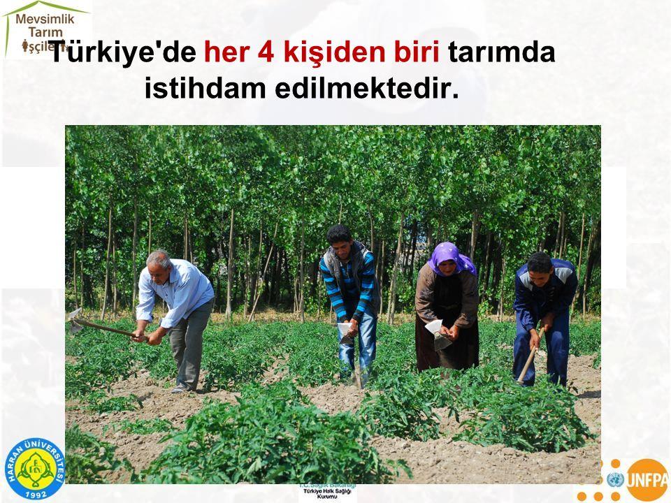 Türkiye'de her 4 kişiden biri tarımda istihdam edilmektedir. TARIM İŞÇİLERİ FOTOĞRAFI