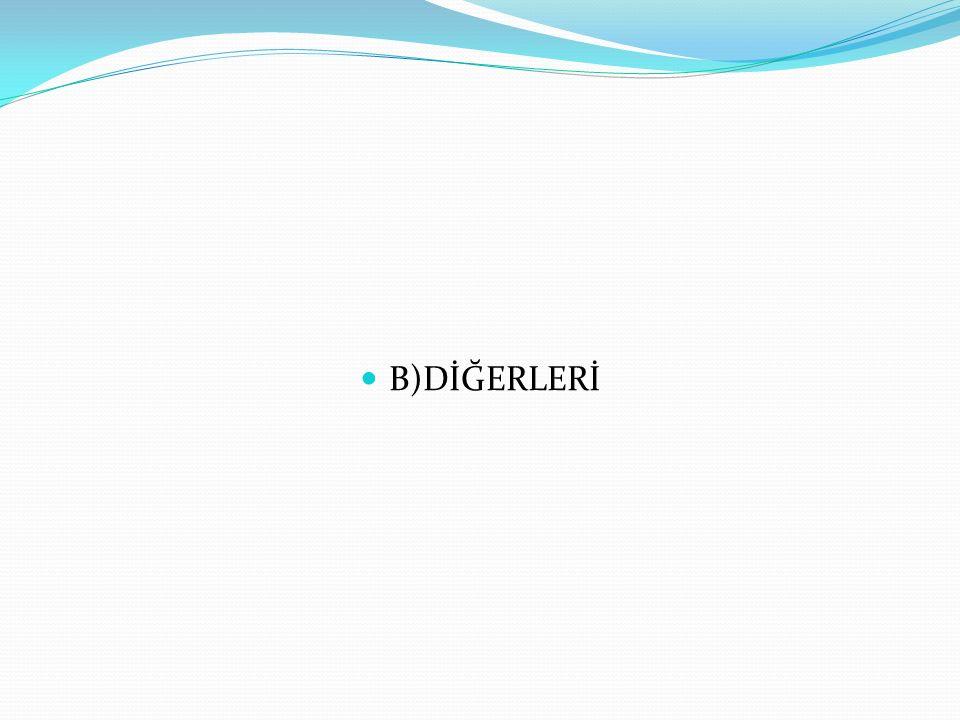 B)DİĞERLERİ