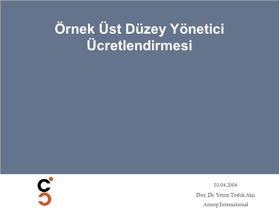 03.04.2004 Doç. Dr. Yeşim Toduk Akiş Amrop International Örnek Üst Düzey Yönetici Ücretlendirmesi