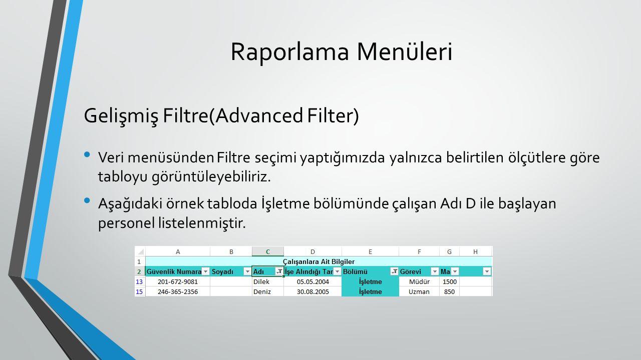 Raporlama Menüleri Veri menüsünden Filtre seçimi yaptığımızda yalnızca belirtilen ölçütlere göre tabloyu görüntüleyebiliriz.