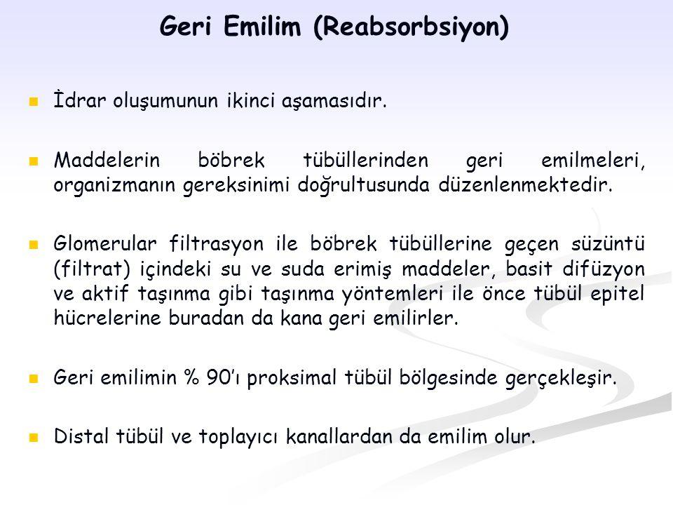 Geri Emilim (Reabsorbsiyon) İdrar oluşumunun ikinci aşamasıdır. Maddelerin böbrek tübüllerinden geri emilmeleri, organizmanın gereksinimi doğrultusund