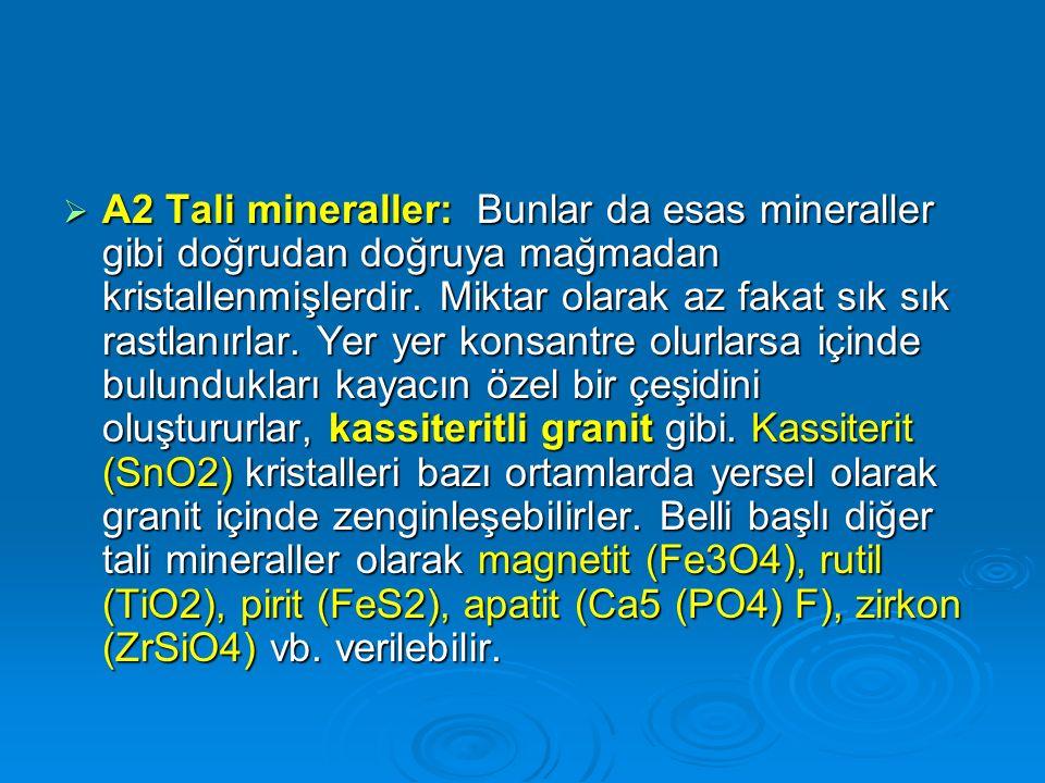  A2 Tali mineraller: Bunlar da esas mineraller gibi doğrudan doğruya mağmadan kristallenmişlerdir. Miktar olarak az fakat sık sık rastlanırlar. Yer y