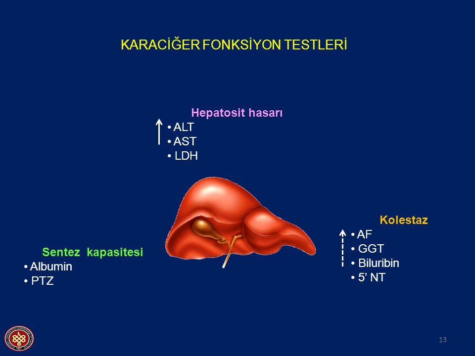 13 KARACİĞER FONKSİYON TESTLERİ Kolestaz AF GGT Biluribin 5' NT Hepatosit hasarı ALT AST LDH Sentez kapasitesi Albumin PTZ
