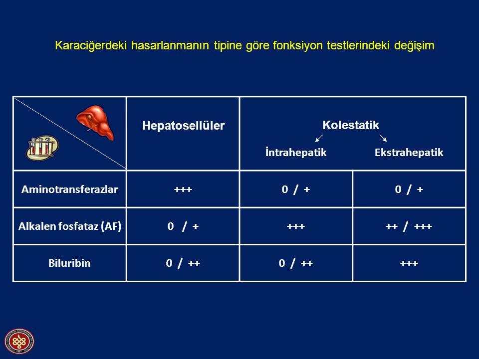 İntrahepatikEkstrahepatik Aminotransferazlar+++0 / + Alkalen fosfataz (AF)0 / ++++++ / +++ Biluribin0 / ++ +++ Karaciğerdeki hasarlanmanın tipine göre fonksiyon testlerindeki değişim Hepatosellüler Kolestatik