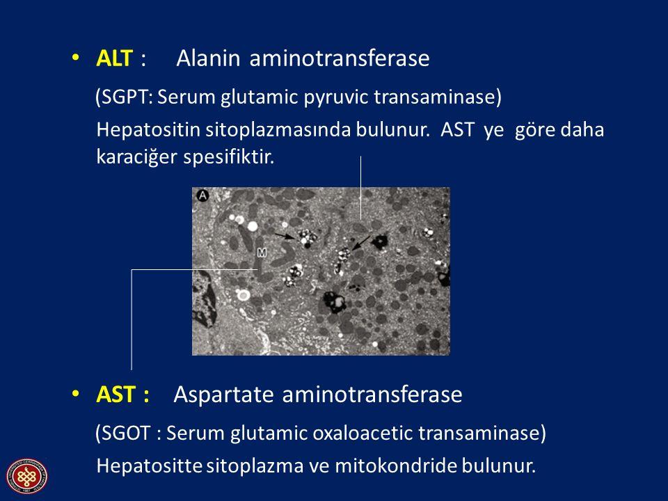 ALT : Alanin aminotransferase (SGPT: Serum glutamic pyruvic transaminase) Hepatositin sitoplazmasında bulunur. AST ye göre daha karaciğer spesifiktir.