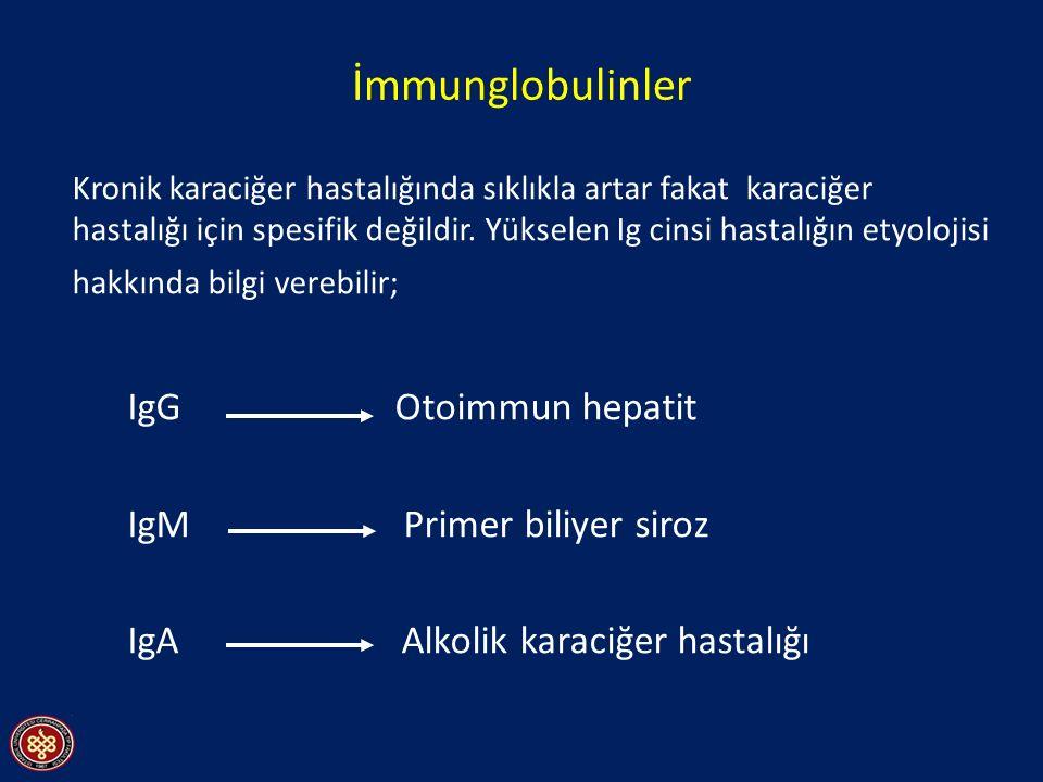 İmmunglobulinler Kronik karaciğer hastalığında sıklıkla artar fakat karaciğer hastalığı için spesifik değildir. Yükselen Ig cinsi hastalığın etyolojis