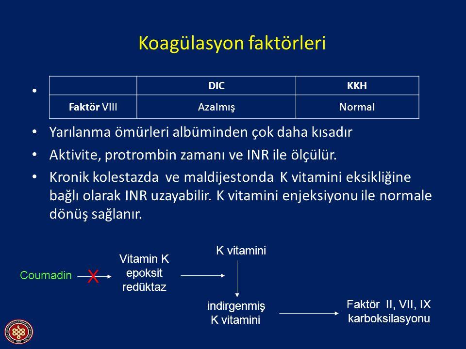 Koagülasyon faktörleri Faktör VIII dışında tüm koagülayon faktörleri karaciğerde yapılır (Faktör VIII RES ve vasküler endotelde üretilir).