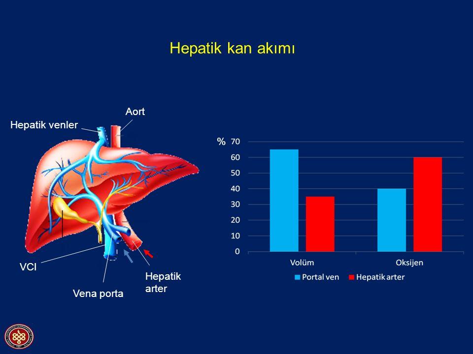 Hepatik kan akımı % Aort Hepatik arter Vena porta Hepatik venler VCI