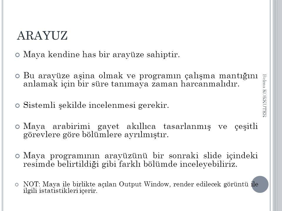 ARAYUZ Maya kendine has bir arayüze sahiptir.