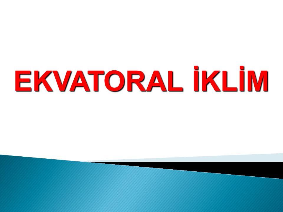 EKVATORAL İKLİM