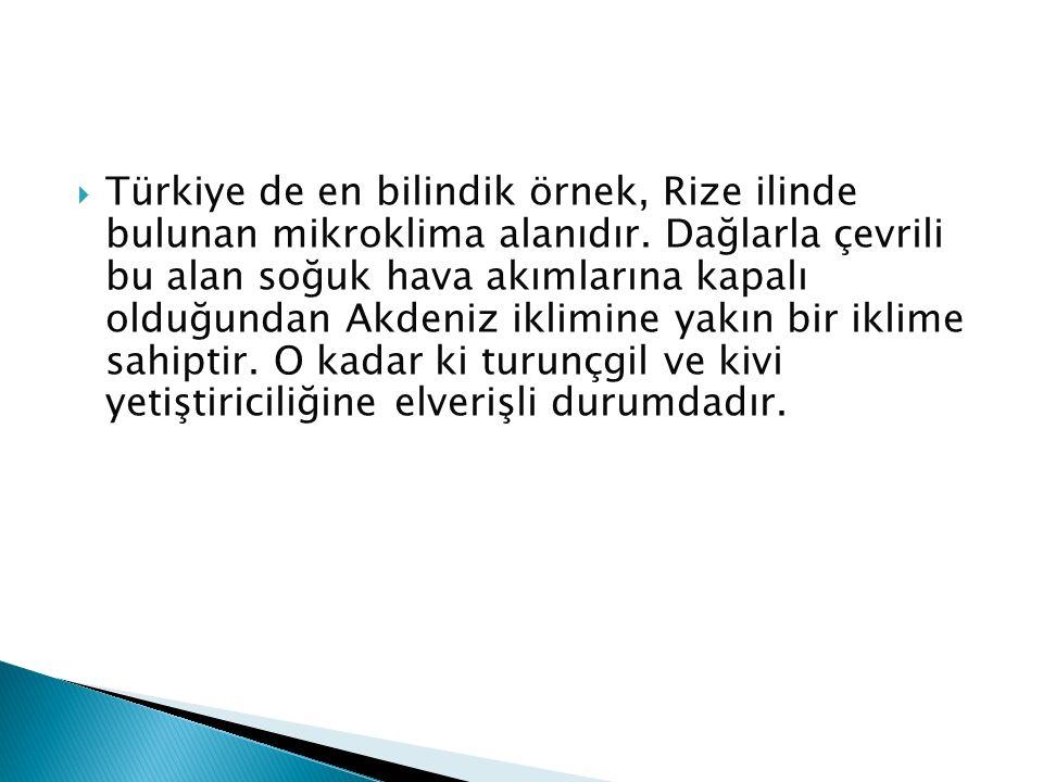  Türkiye de en bilindik örnek, Rize ilinde bulunan mikroklima alanıdır. Dağlarla çevrili bu alan soğuk hava akımlarına kapalı olduğundan Akdeniz ikli