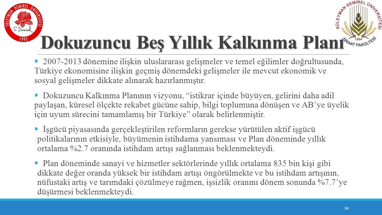 Dokuzuncu Beş Yıllık Kalkınma Planı  2007-2013 dönemine ilişkin uluslararası gelişmeler ve temel eğilimler doğrultusunda, Türkiye ekonomisine ilişkin
