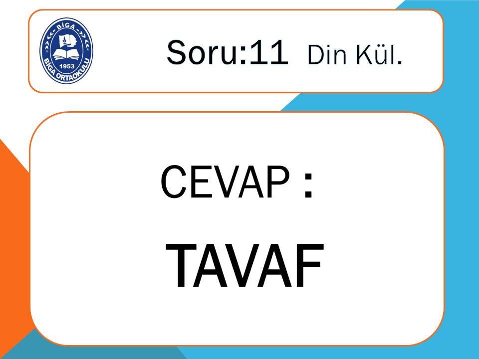 CEVAP : TAVAF