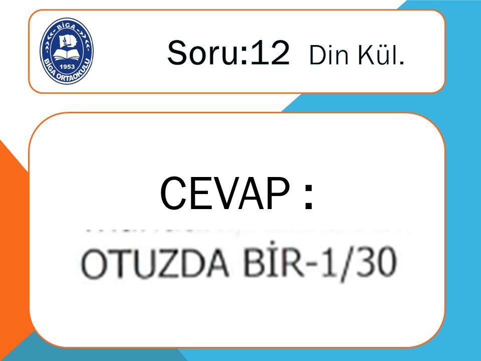 CEVAP :