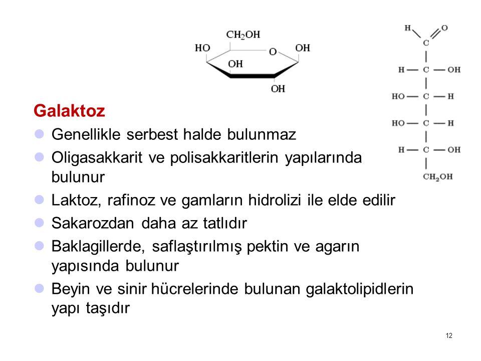 Galaktoz Genellikle serbest halde bulunmaz Oligasakkarit ve polisakkaritlerin yapılarında bulunur Laktoz, rafinoz ve gamların hidrolizi ile elde edilir Sakarozdan daha az tatlıdır Baklagillerde, saflaştırılmış pektin ve agarın yapısında bulunur Beyin ve sinir hücrelerinde bulunan galaktolipidlerin yapı taşıdır 12